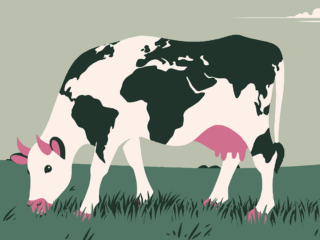 The Environmental Impact of Meat Production